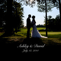 Ashley & David 10x10 Album